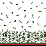 Olive Branch Seamless Border Royaltyfria Bilder