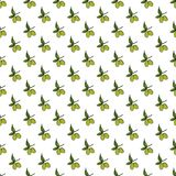Olive branch seamless pattern. Natural background Design with olives for olive oil or cosmetics products, vector illustration Stock Photography