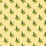 Olive branch seamless pattern. Natural background Design with olives for olive oil or cosmetics products, vector illustration Stock Photo