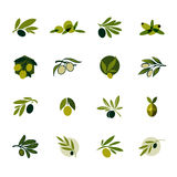 Olive branch. Set of vector logo design templates and icons Royalty Free Stock Photo