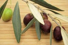 Olive Branch su una Tabella di legno Immagini Stock Libere da Diritti