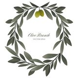 Olive branch wreath isolated. Vector Illustration Stock Image