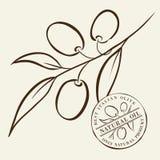 Olive Branches stock abbildung