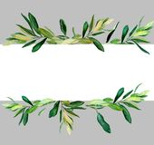 Olive branches behind white template on gray. Watercolor olive branches template on gray background. Hand drawn watercolor illustration. Design for covers stock illustration