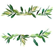Olive branches behind white template. Watercolor olive branches template on white background. Hand drawn watercolor illustration. Design for covers, packaging vector illustration