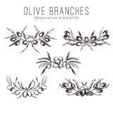 Olive branches, hand drawn retro style vector illustrations. Stock Image