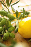 Olive branches with lemon. On table Royalty Free Stock Image