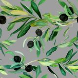 Olive branches pattern on gray background. Watercolor olive branches pattern on gray background. Hand drawn watercolor illustration. Design for covers, packaging vector illustration