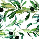 Olive branches pattern on white background. Watercolor olive branches pattern on white background. Hand drawn watercolor illustration. Design for covers vector illustration