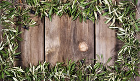 Olive Branches Rustic Wood Background Stock Images