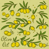 olive branches set Royalty Free Stock Image