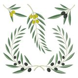 Olive branches Royalty Free Stock Images
