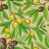 Olive branches vector pattern. On color background stock illustration