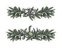 Set with olive garlands, branches in color stock illustration