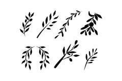 Olive brunch set. Digital illustration Stock Images