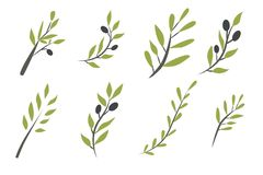 Olive brunch set. Digital illustration Royalty Free Stock Image