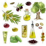 Olive Cartoon Set Royalty Free Stock Images