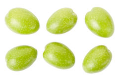 Olive collection Stock Photography
