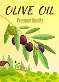 Olive Colored Poster Royalty Free Stock Photos