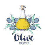 Olive design illustration. Stock Images