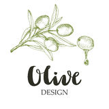 Olive design illustration. Royalty Free Stock Photo