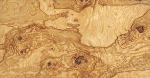 olive drewna Fotografia Stock