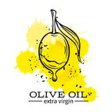 Olive with a drop of oil. Vector hand drawn olive with a drop of oil icon badge in the old ink sketch style for brochures, banner, restaurant menu and market Royalty Free Stock Photos