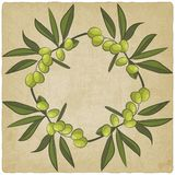 Olive eco old background Stock Image