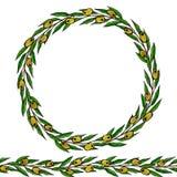 Olive Endless Brush verde Olive Leaves Round Wreath Ejemplo dibujado mano realista Estilo del garabato de Savoyar libre illustration