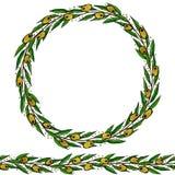 Olive Endless Brush verde Olive Leaves Round Wreath Ejemplo dibujado mano realista Estilo del garabato de Savoyar stock de ilustración