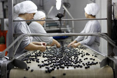 Olive factory Royalty Free Stock Photography