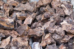 Olive firewood closeup Royalty Free Stock Photography
