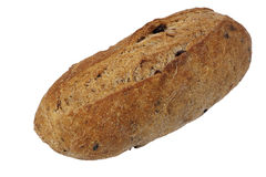 Olive flavored artisan bread Stock Image