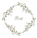 Olive frame hand drawn design Royalty Free Stock Images