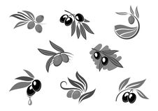 Olive fruit branch with oil isolated icon set Royalty Free Stock Photography