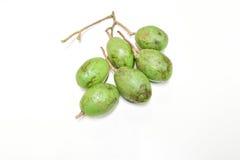 Olive fruit Royalty Free Stock Image