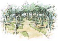 Olive Garden. Landscape natural park Royalty Free Stock Images