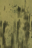 Olive green grunge vintage metallic  texture background. High res   olive green grunge background from an old gate with vertical patterns in Italy Royalty Free Stock Image