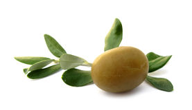 Olive with green leaves Royalty Free Stock Photos