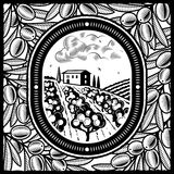 Olive grove black and white. Retro olive grove in woodcut style. Black and white  illustration with clipping mask Stock Images