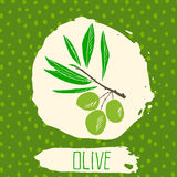 Olive hand drawn sketched fruit with leaf on background with dots pattern. Doodle vector olive for logo, label, brand identity. Royalty Free Stock Images