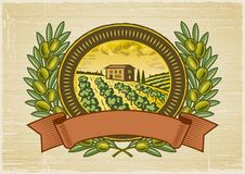Olive harvest label Royalty Free Stock Images