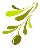 Olive icon. Abstract illustration of the olive branch Stock Photos