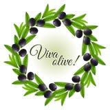 olive kran Arkivfoto