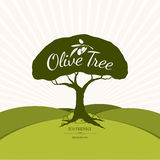 Olive label and logo design Royalty Free Stock Photography