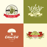 Olive label, logo design Stock Photography