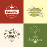 Olive label, logo design Royalty Free Stock Images