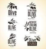 Olive Label uppsättning Royaltyfria Foton