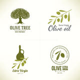 Olive labels design Royalty Free Stock Images
