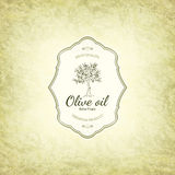 Olive labels design Stock Photo